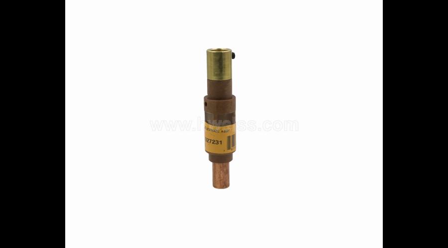 DD-27231 - Electrode Assembly